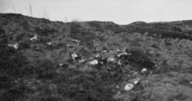 Hill 60 showing bones of members of the 4th Australian Infantry Brigade and New Zealanders, 1919. (From the CEW Bean Collection).